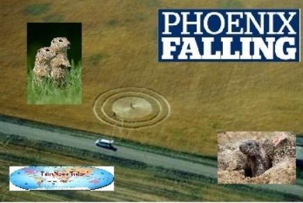 Phoenix Falling-FNT-125%