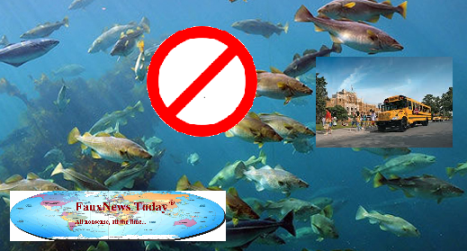 Codfish School-FNT-small