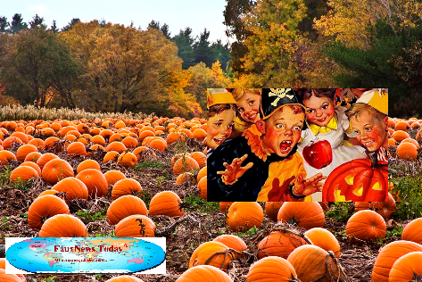 Pumpkin Patch-FNT-Small.png