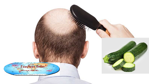 Zucchini Cures Baldness-FNT-small.png