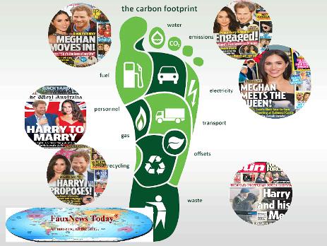 Carbon Footprint-FNT-Small