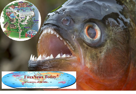 Piranha-500 Lb-FNT-Small
